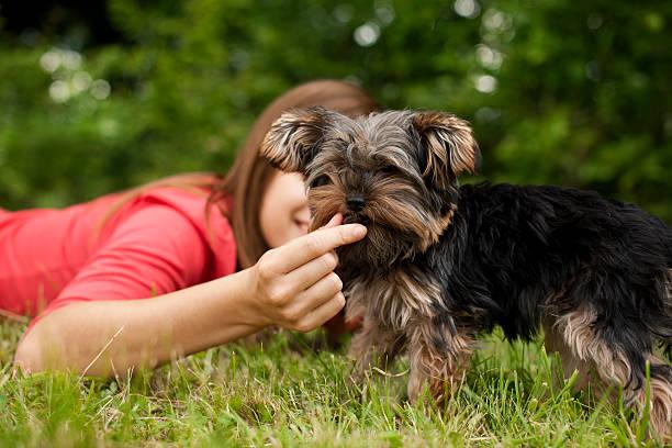 Woman feeding puppy picture id163211198?b=1&k=6&m=163211198&s=612x612&w=0&h= gzmma4xjgel8hssisq7bqa mqvat mkvoujsqfhj3c=
