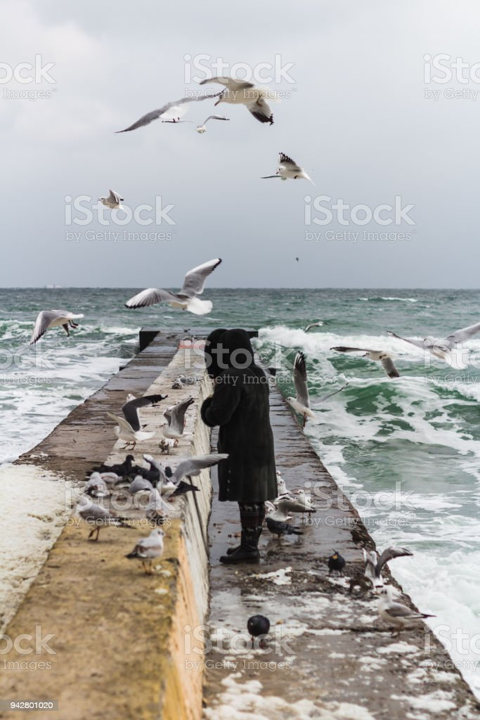 Odessa, Ukraine - Jan 15, 2018: A  woman, feeds numerous gulls on a stone pier by the sea on a winter sunny day. stock photo