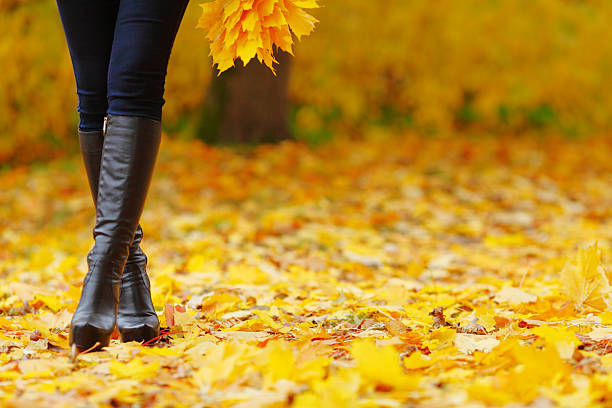 Woman feet  in autumn park stock photo