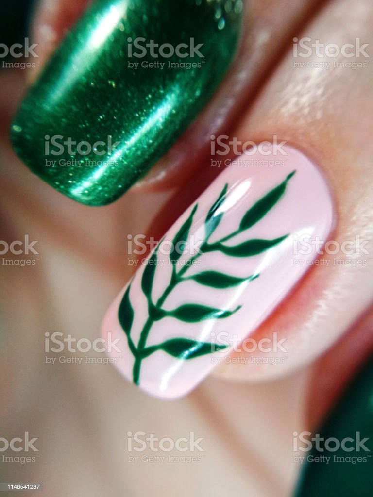 Woman finger pink nude nature green branch leaf manicure gel nail...