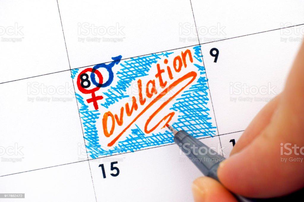 Dedos de mujer con pluma escritura recordatorio la ovulación en el calendario. - foto de stock