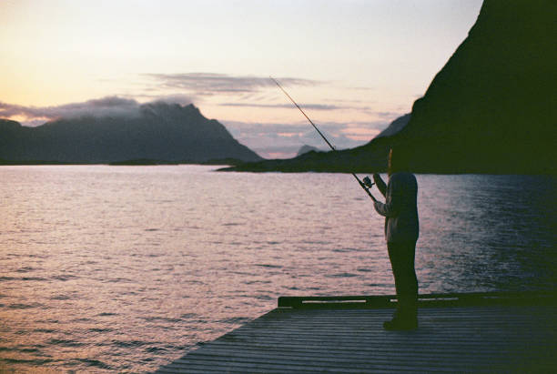 Woman fishing at sunset in Norway stock photo