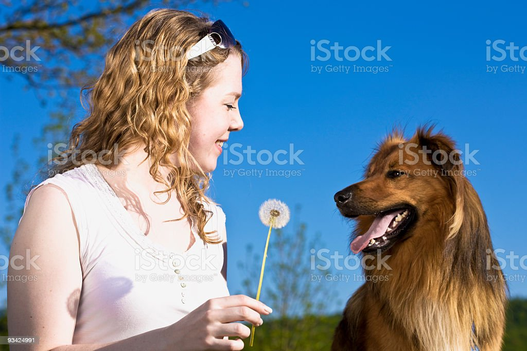 woman flower and dog royalty-free stock photo