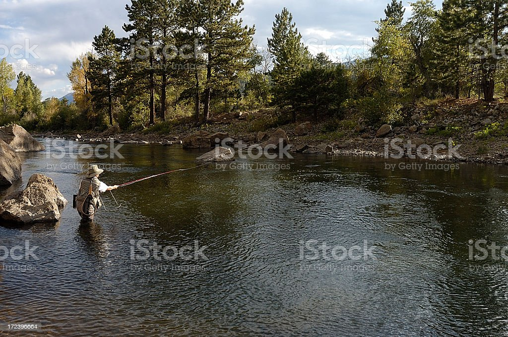 Woman fly fishing in a lake with trees in the background stock photo