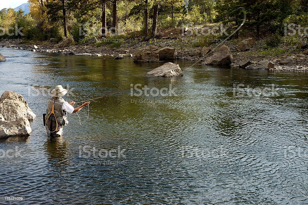 Woman fly fishing in flowing river stock photo