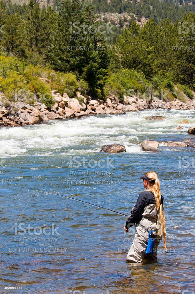 Woman Fly Fishing on the Arkansas River stock photo