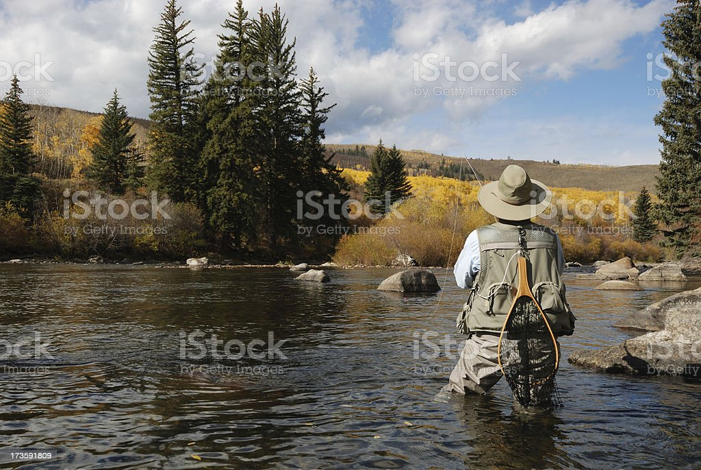 Woman Fly-Fishing stock photo