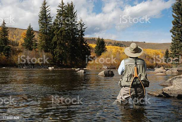 Free aspen fall color images pictures and royalty free for Aspen fly fishing