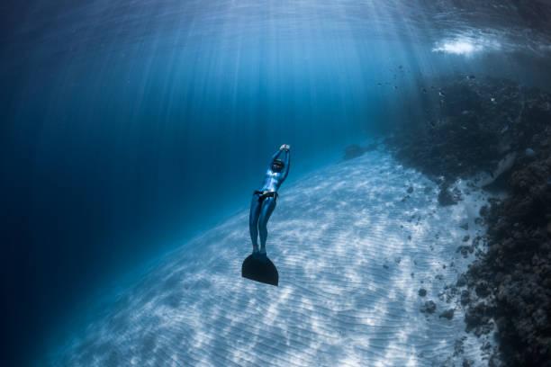 frau freediver gleitet über sandigen boden - freitauchen stock-fotos und bilder