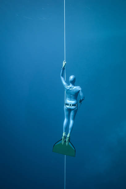 Woman freediving in the ocean stock photo