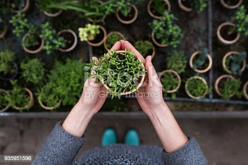 Unrecognizable woman gardener in a large greenhouse holding a pot with a plant. Top view.