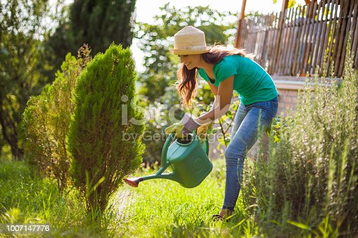 Young woman in her garden. She is watering plants.