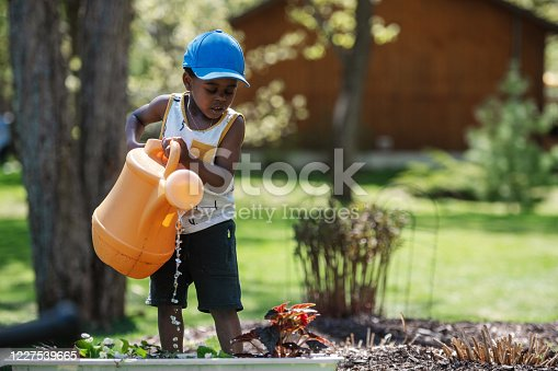 istock Woman gardening with her son 1227539665