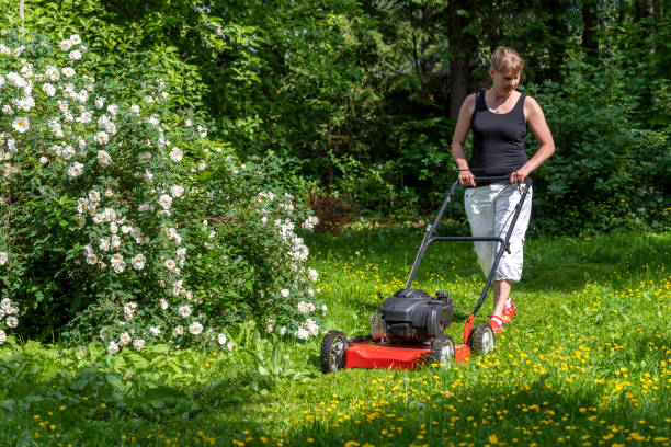 Woman gardening with lawn mower stock photo