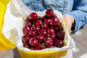 Woman giving lunchbox with fresh ripe tasty cherries. Girls hand holding box with organic sweet berries. Healthy food and vitamin offer concept.