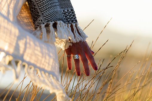 Woman hand caressing grass in nature near the sea at sunset