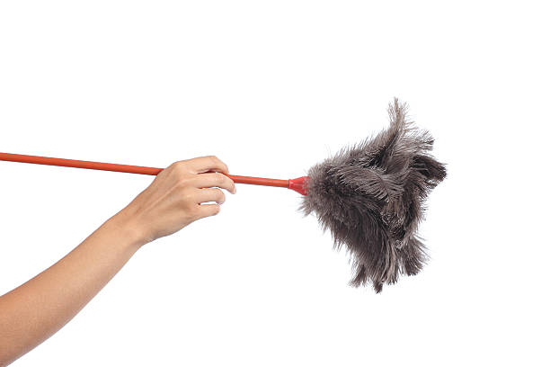 Woman hand holding a duster clean stock photo