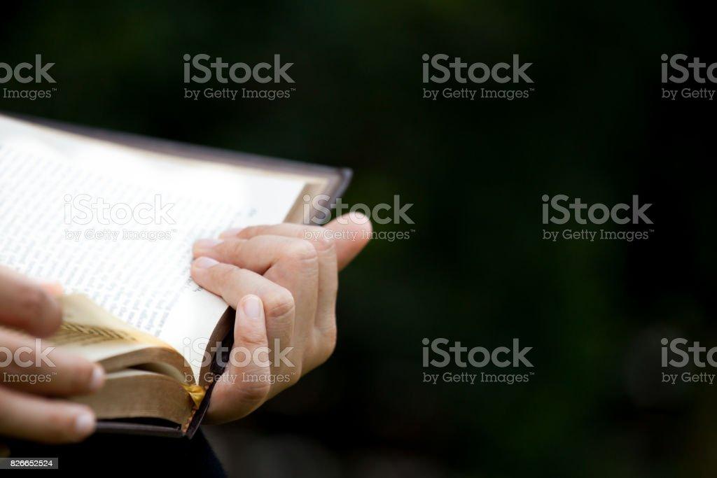 Explotación de la mano de mujer y leyendo un libro en el parque natural - foto de stock