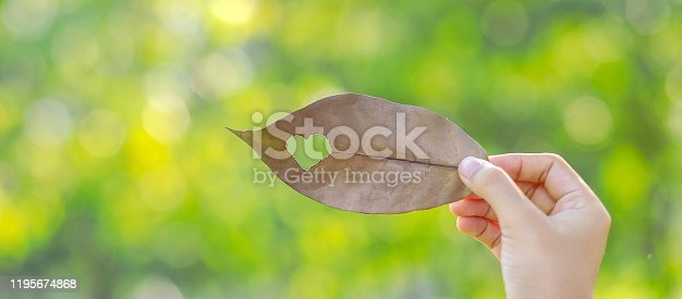 Woman hand holding dried leaf with heart shape on green natural background in the garden outdoor. Social Responsibility Love and  Happy Valentine