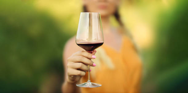 Woman hand holding glass of red wine. Focus on wine glass. stock photo