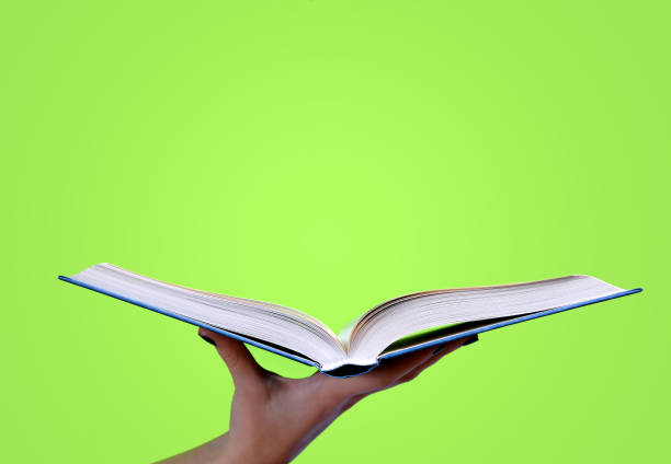 Woman hand holding open book on green background. stock photo