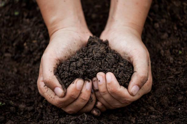 Frau Hand mit Boden in Herzform für die Bepflanzung – Foto