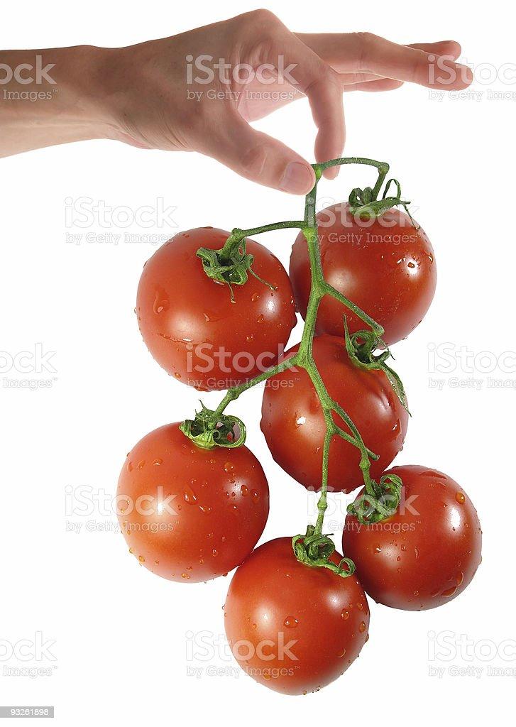 Woman hand holding tomato royalty-free stock photo