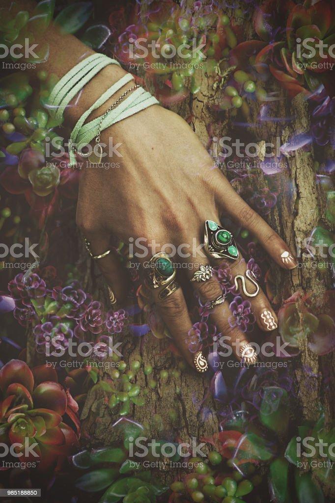 woman hand on tree surface stock photo