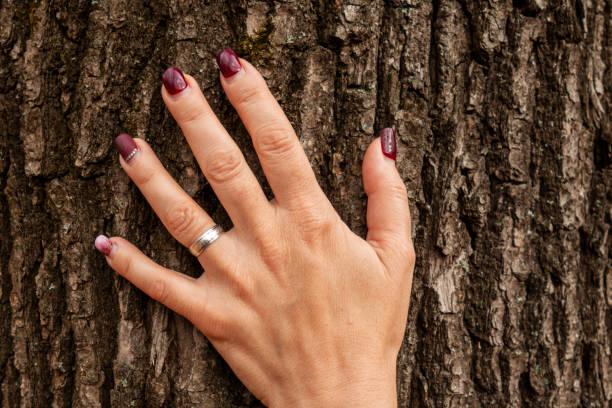 frau hand auf baumstamm. konzept der rettung der umwelt oder der einheit mit der natur. nahaufnahme bild der palme berührendeinde. ökologie und aktiver lebensstil - eheringe öko stock-fotos und bilder