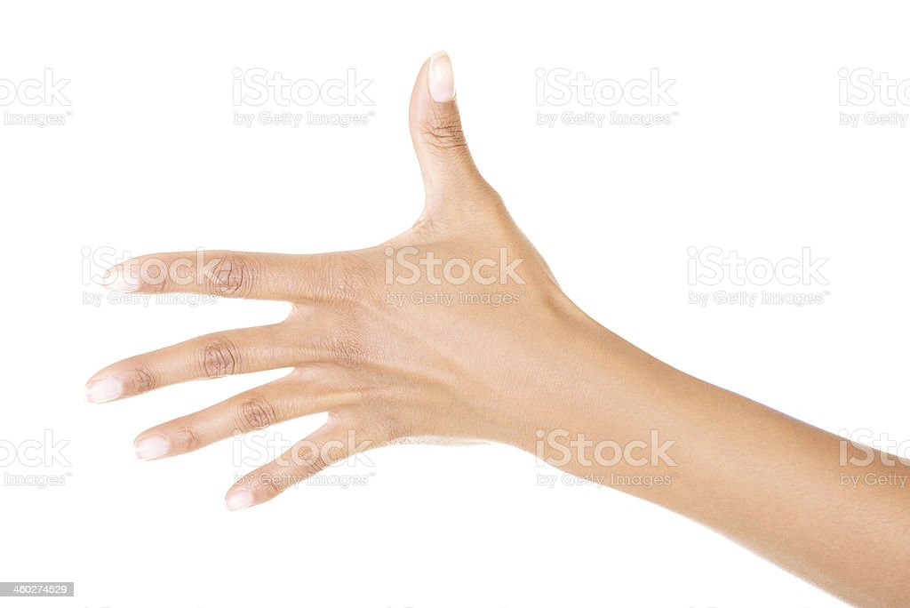 Woman hand (palm) royalty-free stock photo
