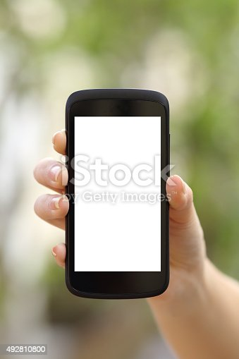 istock Woman hand showing a blank smart phone screen display 492810800