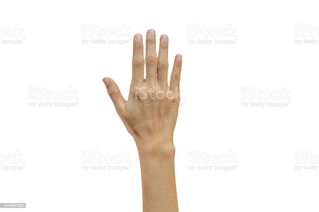 315a15b454 Dos, Dos humain, Gestes, Main, Main humaine. Main de femme montrant cinq  doigts isolés sur fond blanc ...