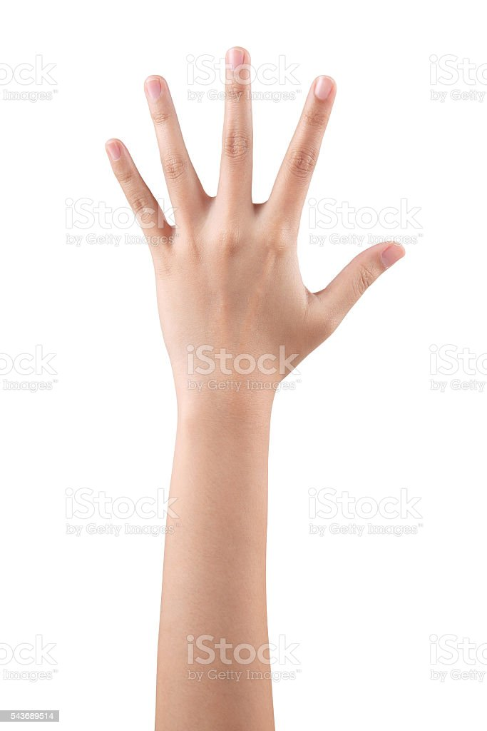 Woman hand showing the five fingers isolated stock photo