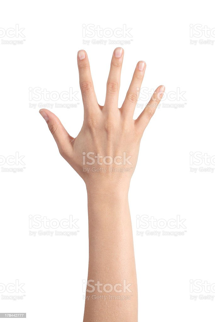 Woman hand showing the five fingers stock photo