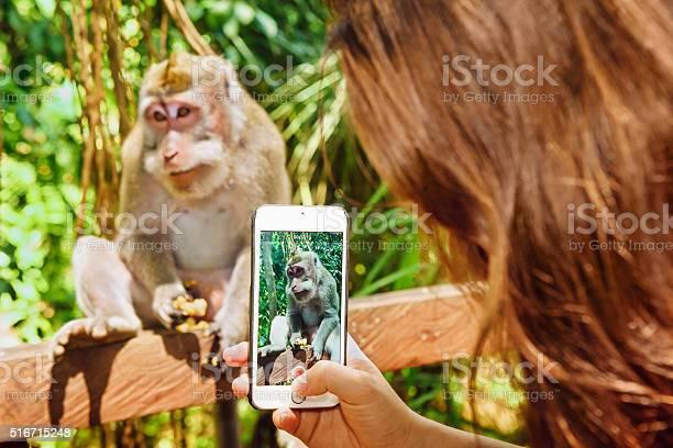 Erwachsene Videos Affe und Mädchen