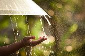 雨の中で傘を持つ女性手