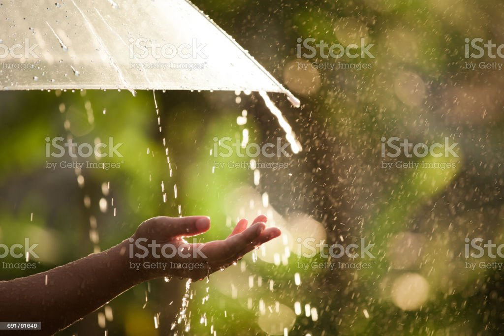 Woman hand with umbrella in the rain stock photo