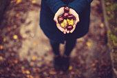 秋のポートレート