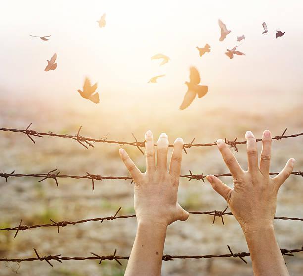 woman hands hold rusty sharp wire with hope for freedom - religionsfreiheit stock-fotos und bilder
