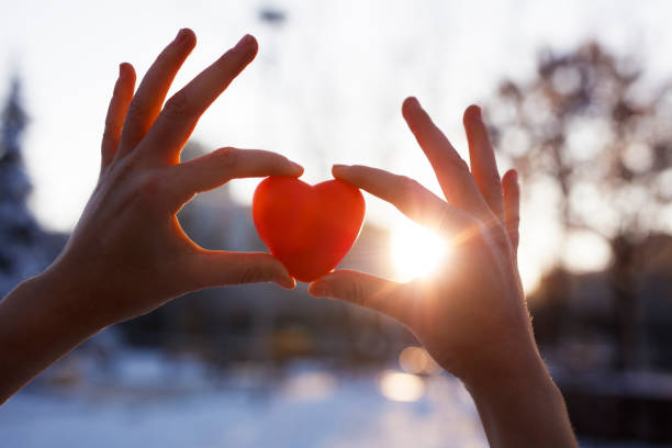 Woman hands holding red heart at sunset stock photo