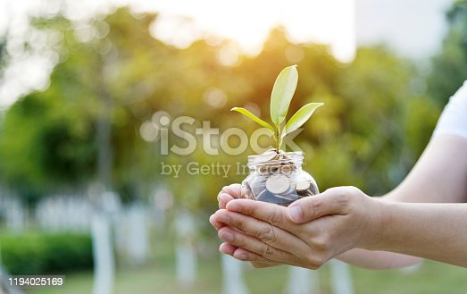 Woman hands holing a jar with coins and plant.