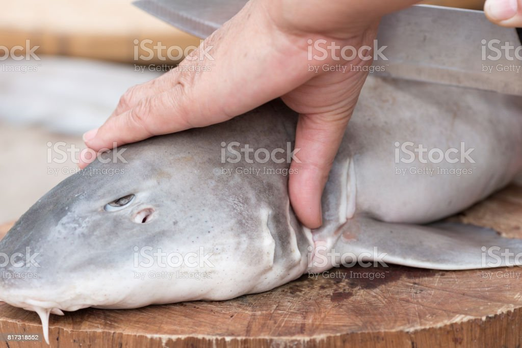 Woman hands kill baby shark on wood cutting board. stock photo