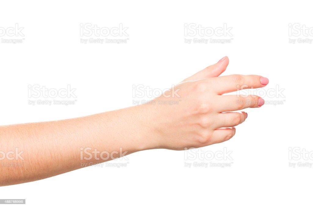 女性手に白背景 - 1人のロイヤリティフリーストックフォト