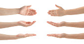 Woman Hands Set , isolated