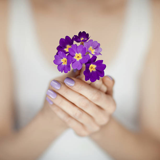woman hands with beautiful fingernails in purple holding flowers stock photo