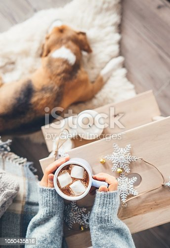618750646istockphoto Woman hands with cup of hot chocolate close up image; cozy home; sleeping dog; christmas time 1050435816