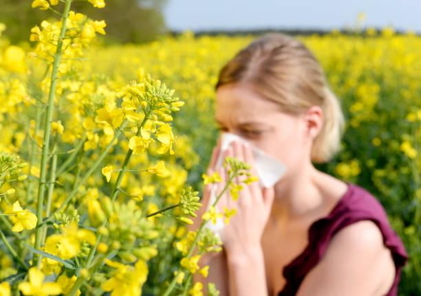 femme a le rhume des foins - allergies photos et images de collection