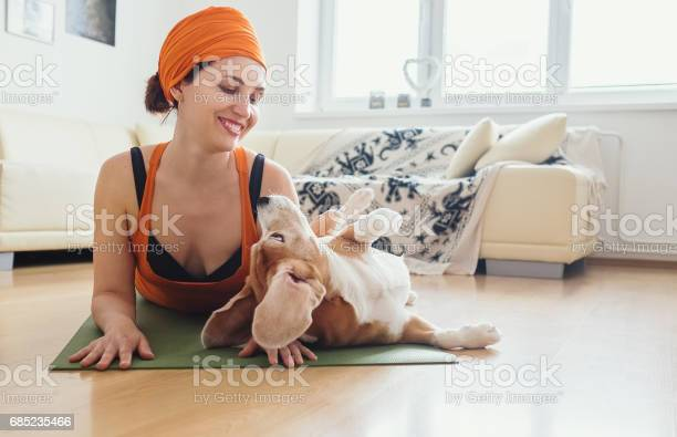 Woman has yoga practice at home but dog try to play with her picture id685235466?b=1&k=6&m=685235466&s=612x612&h=0las1mmwnqkpv7djfizopasin58n6s7bqianthjiah0=
