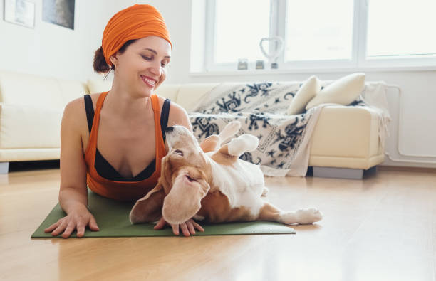 Woman has yoga practice at home but dog try to play with her picture id685235466?b=1&k=6&m=685235466&s=612x612&w=0&h=vdfeu9fipdqswuvjlj6p4yomlsbiavtmb5nx7wwu na=