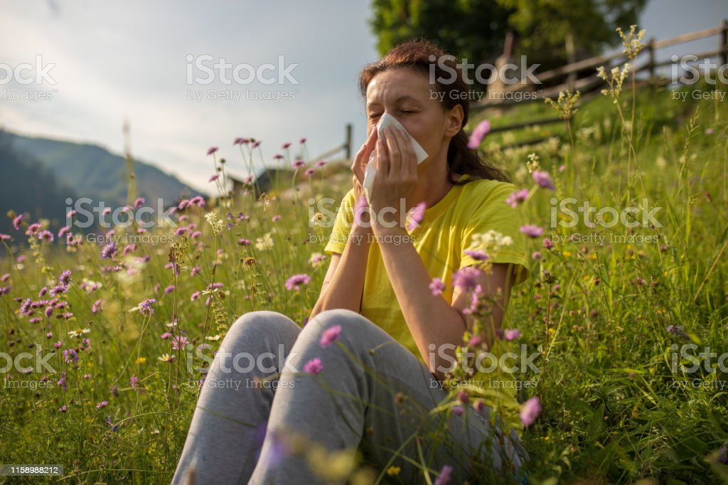 One mature adult woman sitting on meadow full of flowers at summer...